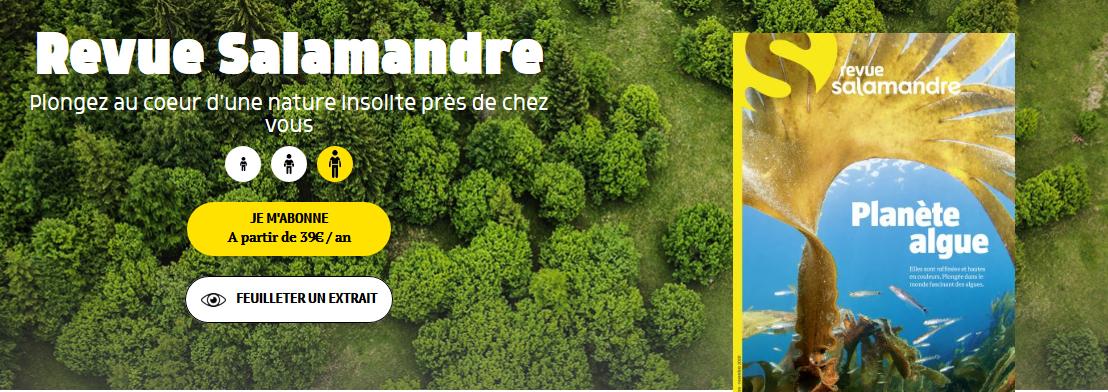 Screenshot_2020-11-20 Présentation de la Salamandre - La Salamandre.png